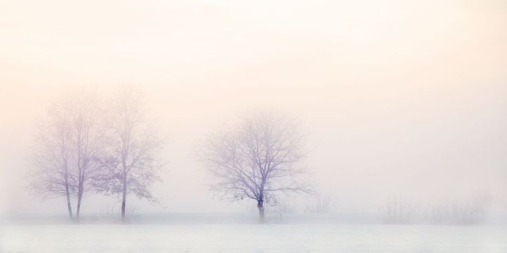 winter-landscape-2571788__480