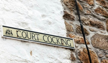 court-cocking-street-name-sign-funny-amusing-strange-unusual-st-ives-E82N7J.jpg
