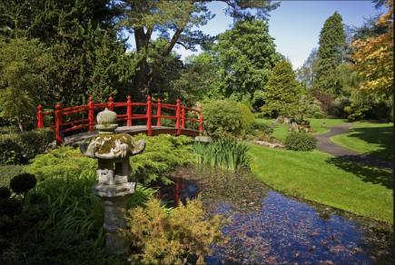 Japanese gardens CK